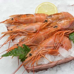 Grosses Gambas Sauvages...